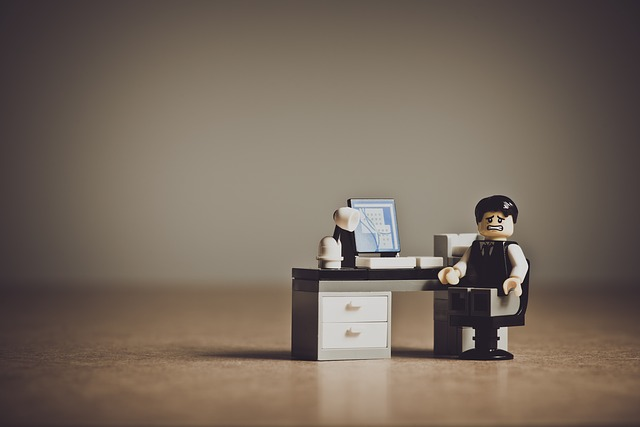 payrolling detacheringsrichtlijn